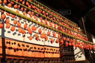 秋の写真・画像素材[1634912]