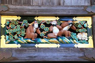 木製のベンチの上に座っているぬいぐるみの動物のグループの写真・画像素材[1640777]