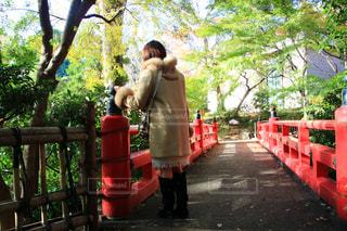 赤いベンチに座る人の写真・画像素材[1673419]