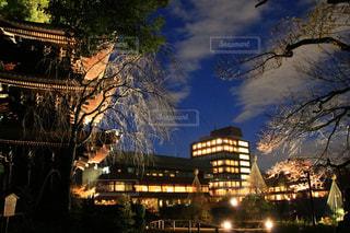 夜の街の景色の写真・画像素材[1681173]