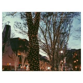 夜の街の写真・画像素材[921000]