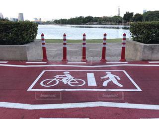 自転車,スポーツ,健康,サイクリング,サイクルロード
