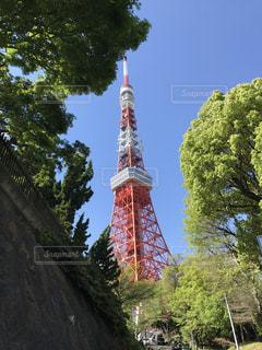 東京タワーの写真・画像素材[566841]