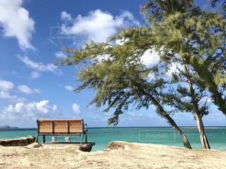 自然,海,空,夏,ベンチ,アメリカ,観光,旅行,America,ハワイ,Hawaii,ホノルル