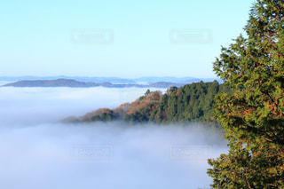 自然の写真・画像素材[454469]