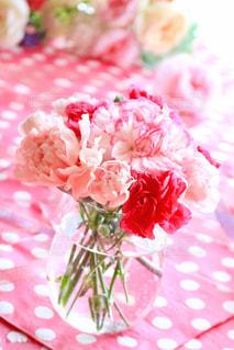 花の写真・画像素材[482671]