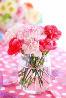 花の写真・画像素材[482749]