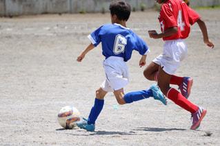 スポーツの写真・画像素材[650286]