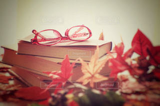 テーブルの上の赤い花の写真・画像素材[767315]