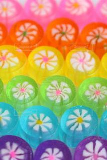 色とりどりの花のグループ - No.790336