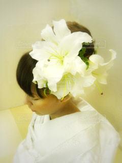 近くの花のアップの写真・画像素材[816807]