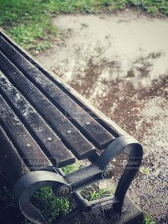 近くの草の中に座っている緑豊かな公園のベンチの写真・画像素材[816988]