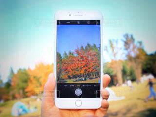 携帯電話を持つ手の写真・画像素材[866939]