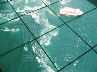 水面下を泳ぐ魚たちの写真・画像素材[1041275]