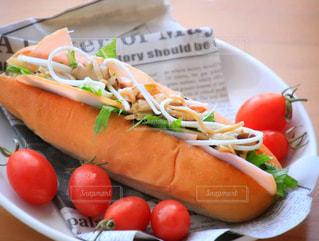 ホットドッグと食品のプレート - No.1146880