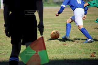 サッカーの試合の写真・画像素材[1347396]