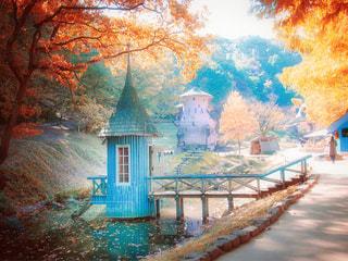 秋の公園の写真・画像素材[1638367]