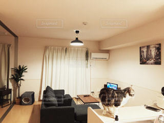 リビング ルームは、家具やテレビでいっぱいの写真・画像素材[1013183]
