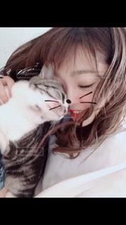 猫を持っている人の写真・画像素材[1256456]