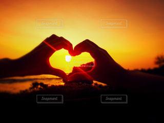 loveの写真・画像素材[445137]