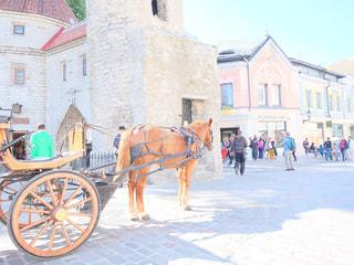 街で馬車馬に乗る男の写真・画像素材[818975]