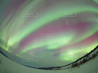 近くに緑の光のアップの写真・画像素材[822816]