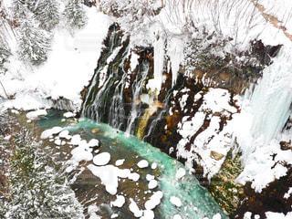雪降る白ひげの滝の写真・画像素材[915360]