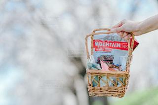 アーモンドロカでピクニックの写真・画像素材[2053223]
