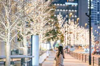 女性,1人,屋外,イルミネーション,都会,グランフロント大阪,シャンパンゴールド