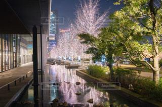 夜景,屋外,水面,反射,都会,高層ビル,リフレクション,明るい,グランフロント大阪,シャンパンゴールド