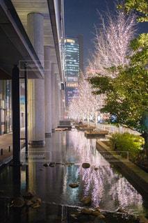 建物,屋外,大阪,水面,反射,樹木,イルミネーション,都会,リフレクション,グランフロント大阪,シャンパンゴールド