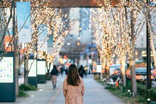 女性,風景,屋外,イルミネーション,人,梅田,通り,グランフロント大阪,シャンパンゴールド
