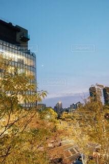 都市の高い建物の写真・画像素材[3930646]