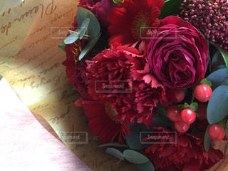 花の写真・画像素材[401063]