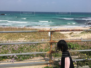 フェンスを見て海を見ているベンチに座っている女性の写真・画像素材[2344062]