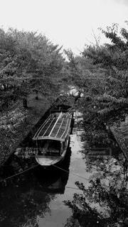 京都伏見 十石舟・三十石船の写真・画像素材[827074]