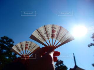 #京都の写真・画像素材[310974]