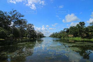 カンボジアの川の写真・画像素材[1113389]