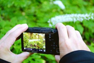 カメラマン - No.783287