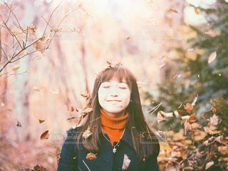 散りゆく秋。の写真・画像素材[1614069]