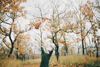 秋のシャワー!の写真・画像素材[1614133]