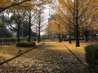 上尾市,平塚公園