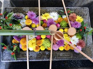 色とりどりの花のグループの写真・画像素材[1885907]