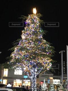 夜ライトアップされたクリスマス ツリーの写真・画像素材[932184]