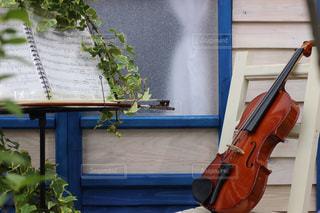 バイオリンの写真・画像素材[532398]