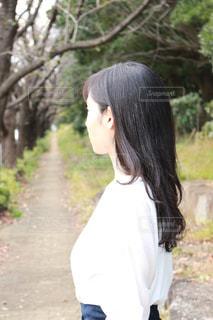 資生堂TSUBAKIさらさらストレートの写真・画像素材[1609232]