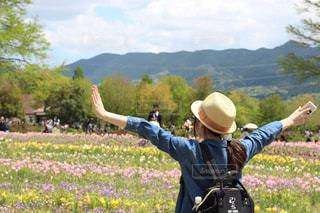 お花畑の写真・画像素材[473631]