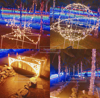 冬,イルミネーション,クリスマス