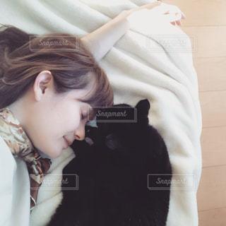 猫の写真・画像素材[314280]