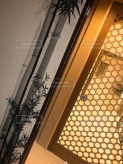 窓の外にぶら下がっている犬の写真・画像素材[1016339]
